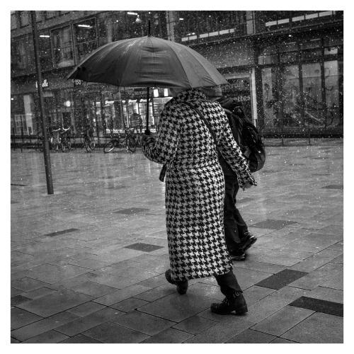 paraplydam_2021